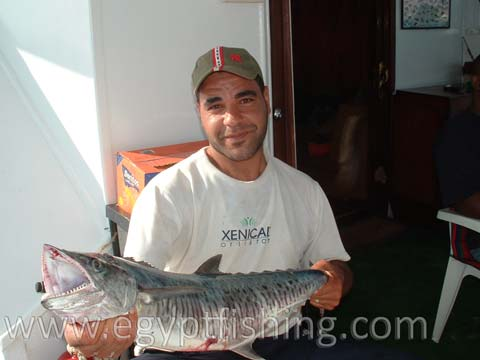 Wahoo, King Mackerel, King Fish