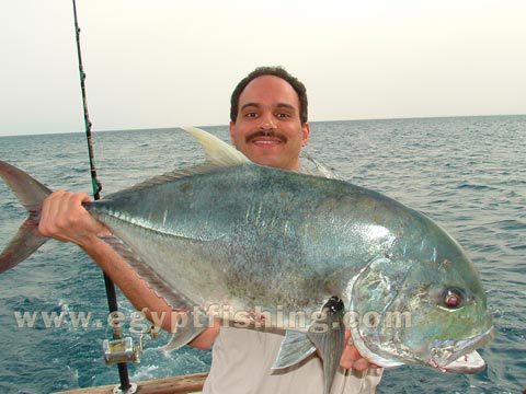 Image of Saltwater angling (Giant Trevally-Caranx Ignobilis): Red sea trolling